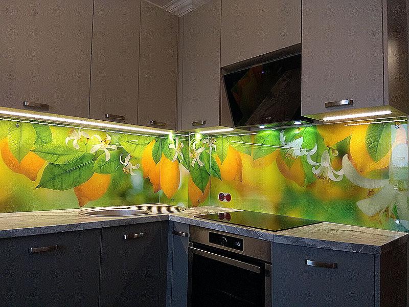 Citrusaugļu panelis